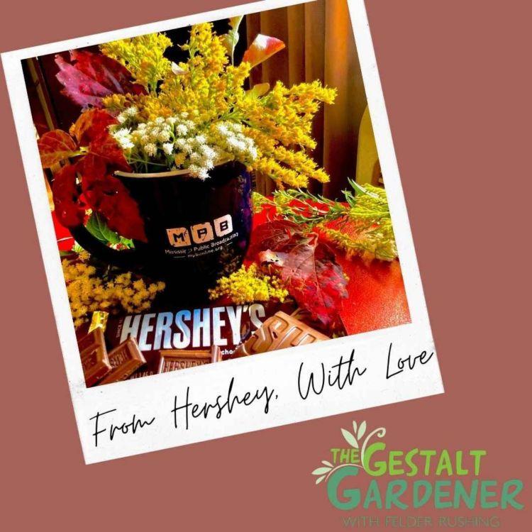 cover art for The Gestalt Gardener | From Hershey, With Love