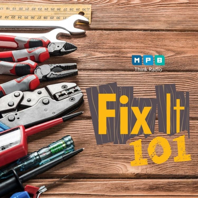 cover art for Fix It 101: At Home Remedies