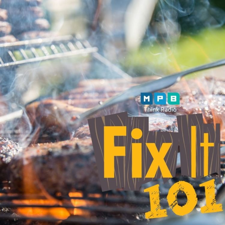 cover art for Fix It 101: All In My Grill