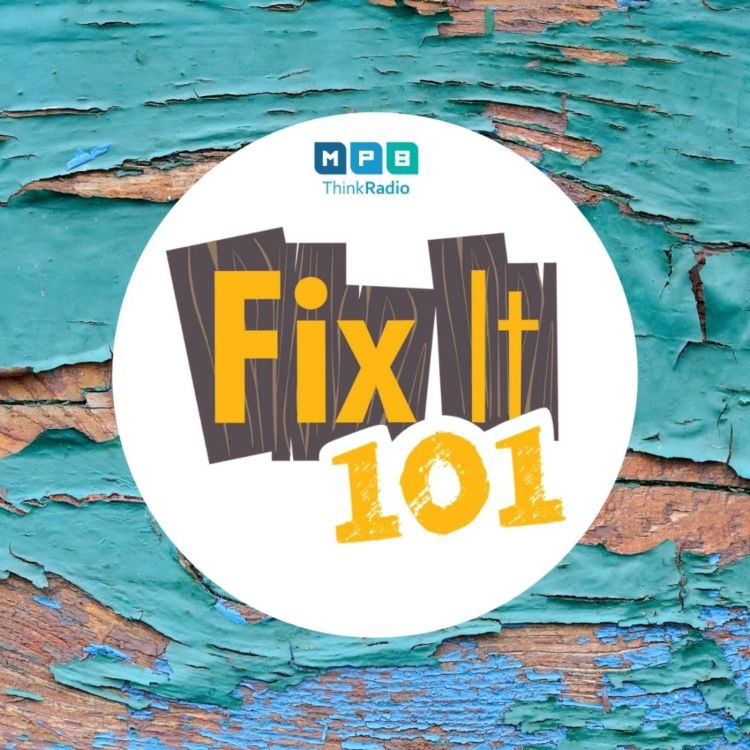 cover art for Fix It 101: Summer Wash and Paint