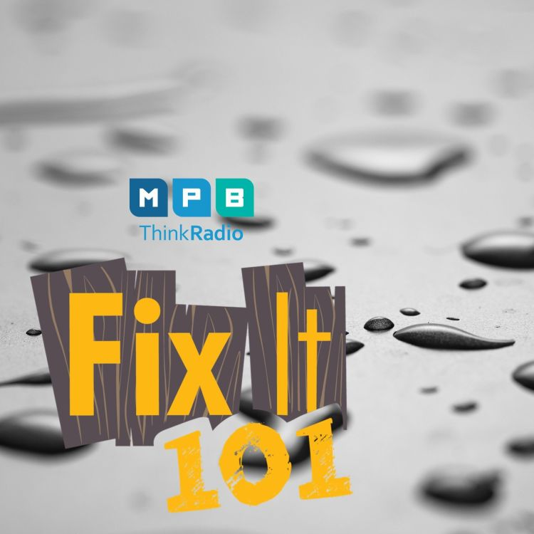 cover art for Fix It 101: Water Displacement