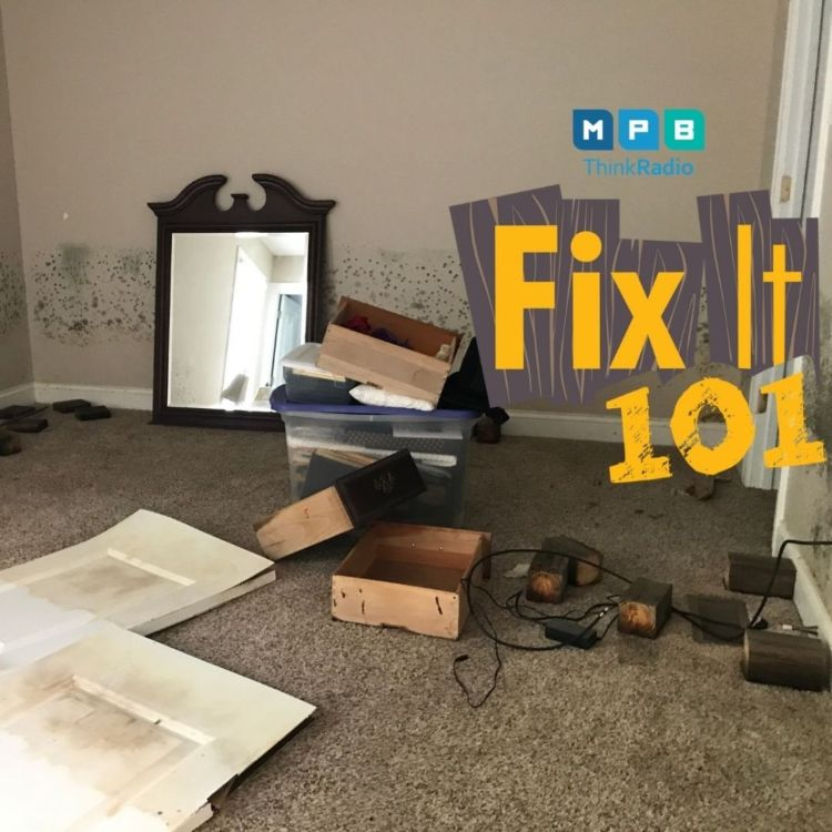 cover art for Fix It 101 | Floods and Flooring