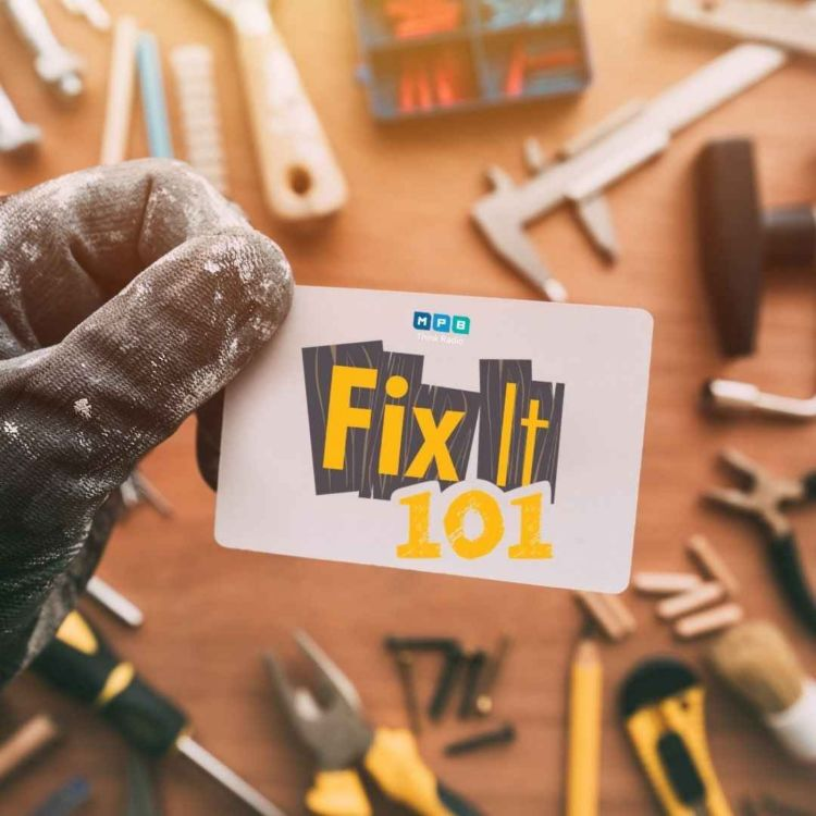 cover art for Fix It 101 | Small Engine Man