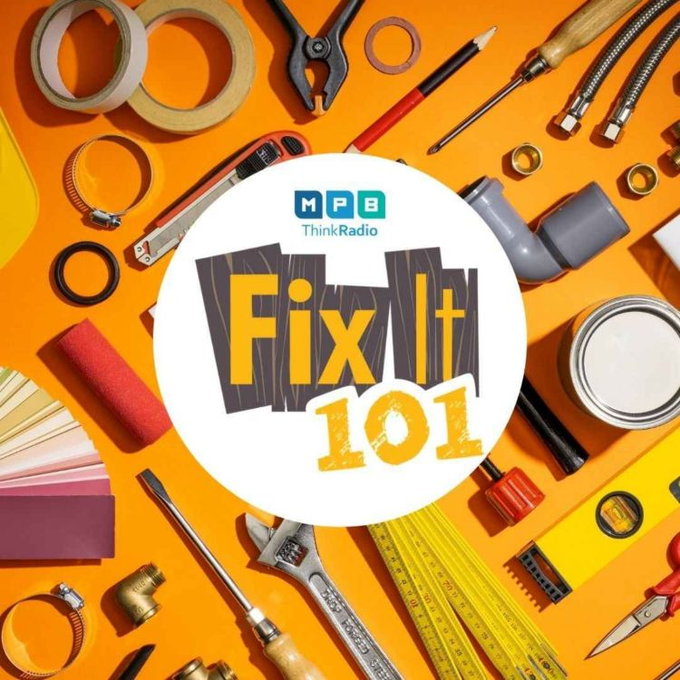 cover art for Fix It 101 | Bye 2020