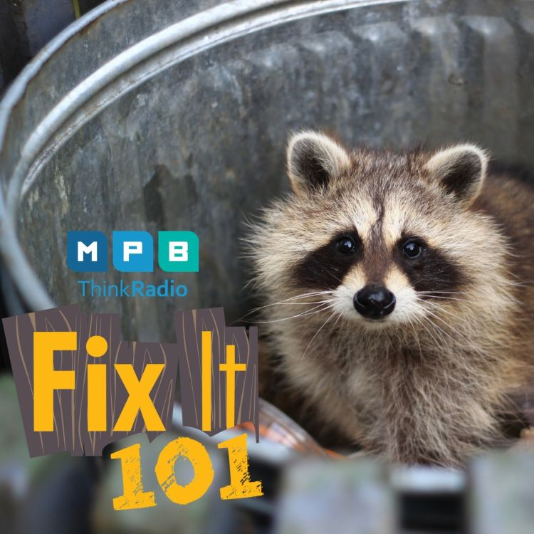 cover art for Fix It 101 | Pest Control with John Able