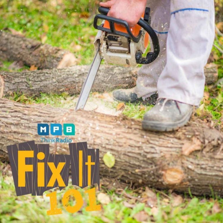 cover art for Fix It 101   Hiring After a Storm