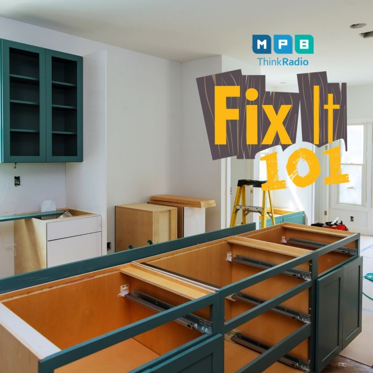 cover art for Fix It 101 | Pam, Shane, and The Remodel