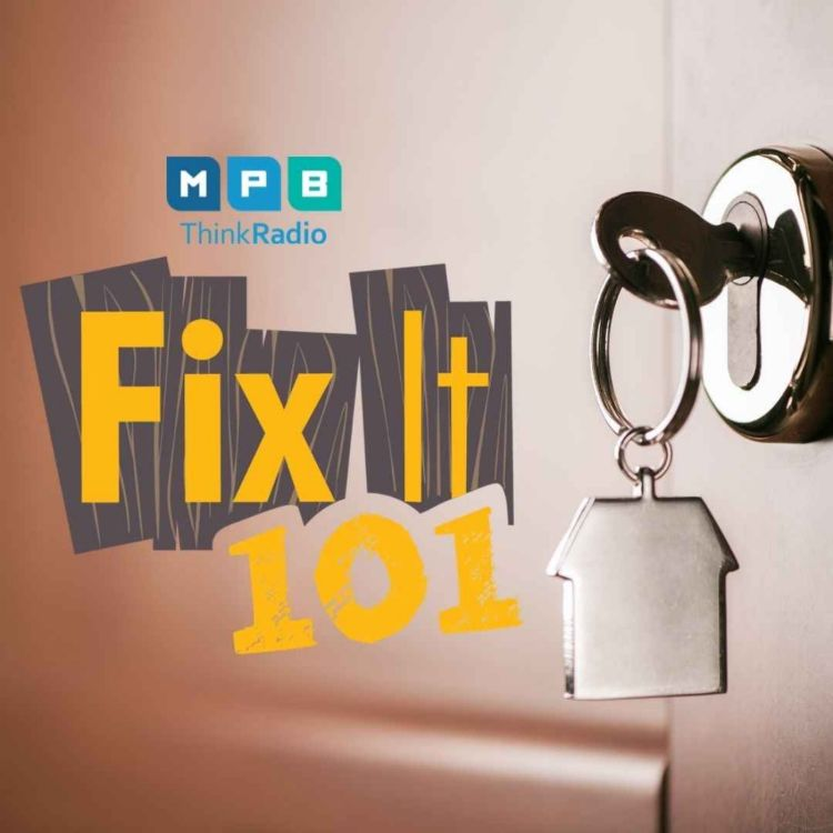 cover art for Fix It 101 | Reunited And Its Feels Better Than Zoom