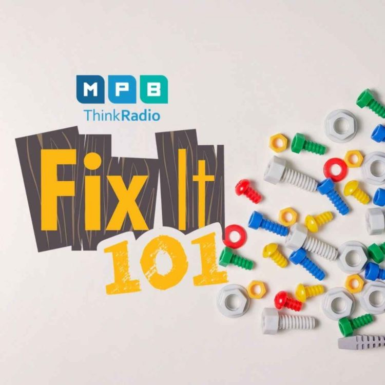 cover art for Fix It 101 | Busy Summer