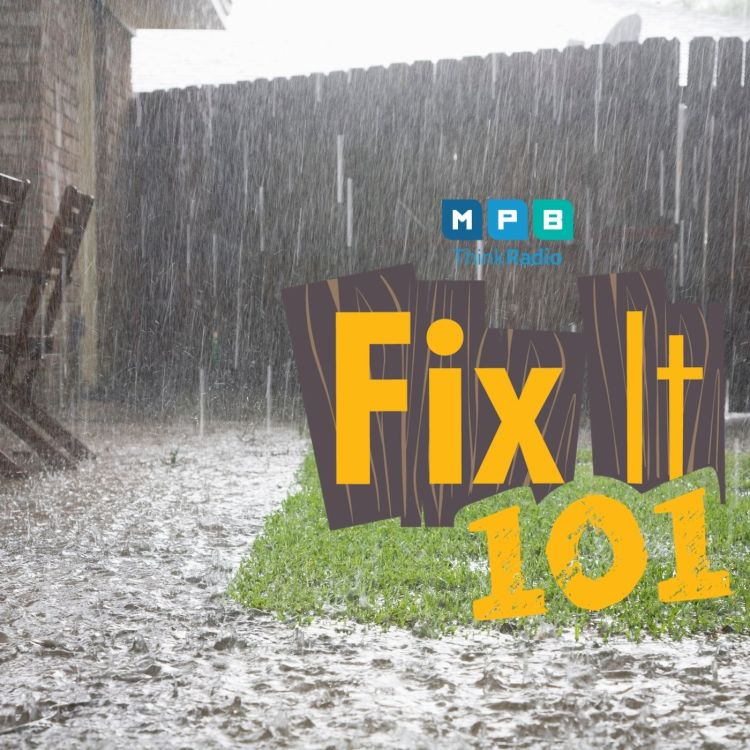 cover art for Fix It 101 | Storm Insurance