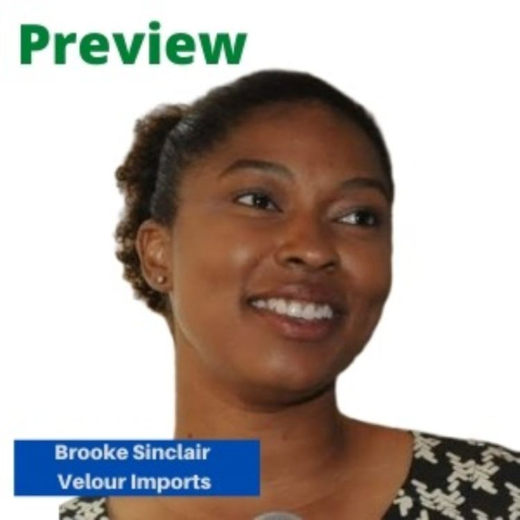 cover art for PREVIEW: Brooke Sinclair, Velour Imports