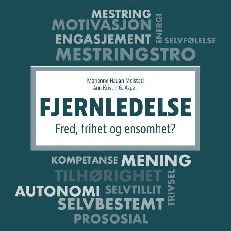 cover art for Fjernledelse
