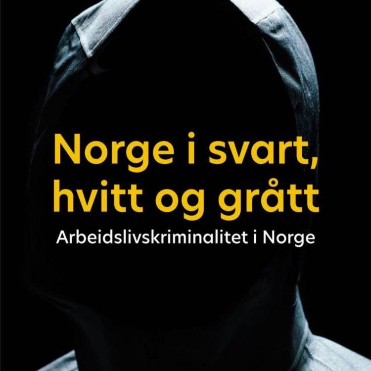 cover art for Norge i svart, hvitt og grått