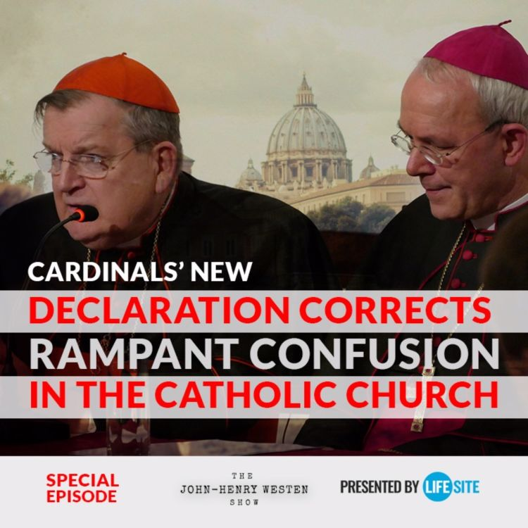cover art for Special Edition: Cardinals' new declaration corrects rampant confusion in the Church
