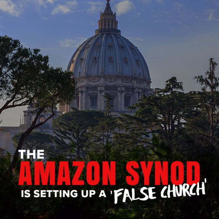cover art for The Amazon Synod is setting up a 'false Church'