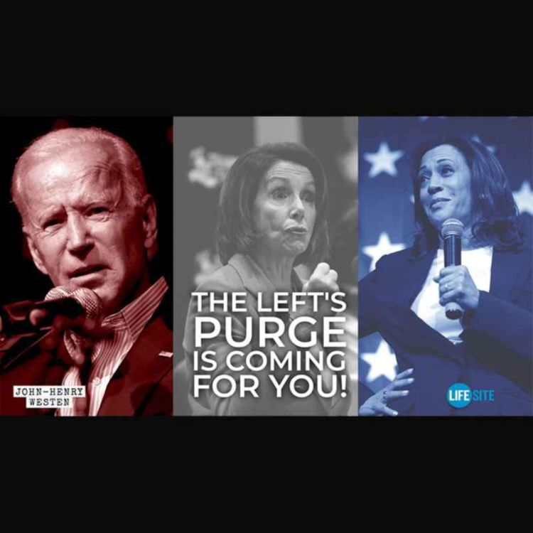 cover art for The vilification and purge is not so much about Trump as it is about you