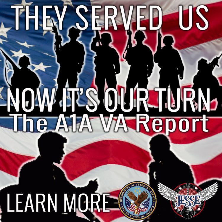 cover art for VA Report Episode 4
