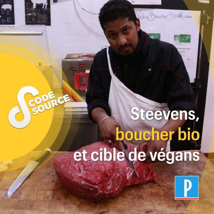 cover art for Steevens, boucher bio et cible de végans