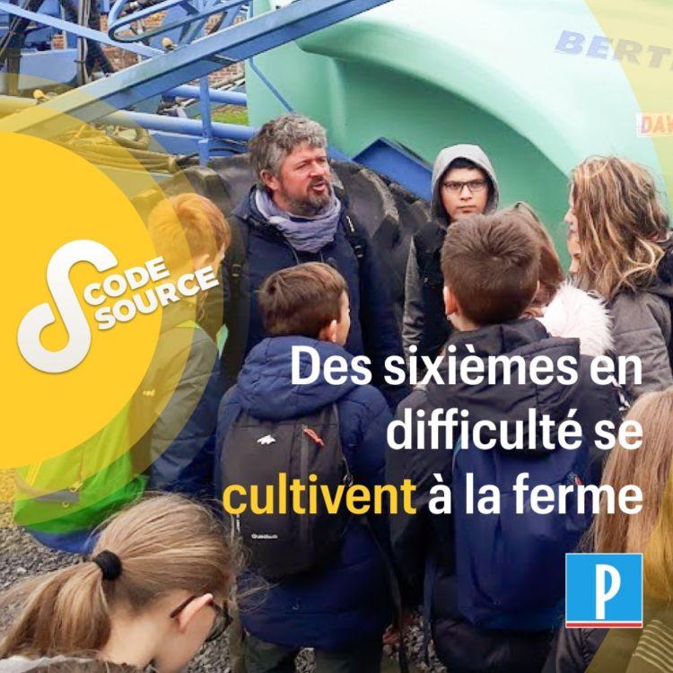 cover art for Des sixièmes en difficulté se cultivent à la ferme
