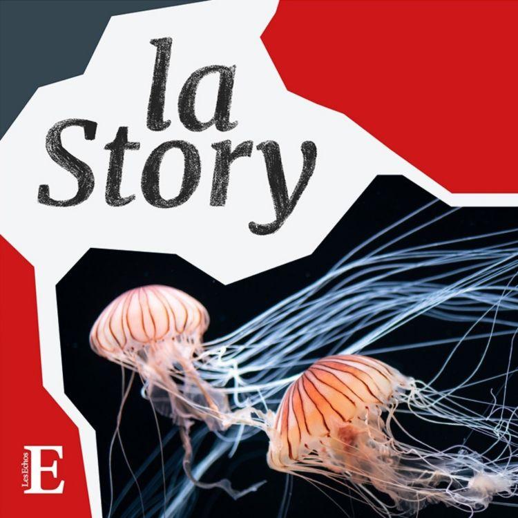 cover art for La méduse sera-t-elle l'avenir de l'Homme?
