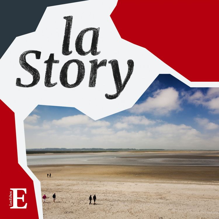 cover art for Baie de Somme : un nouveau Sud qui veut rester « nature »