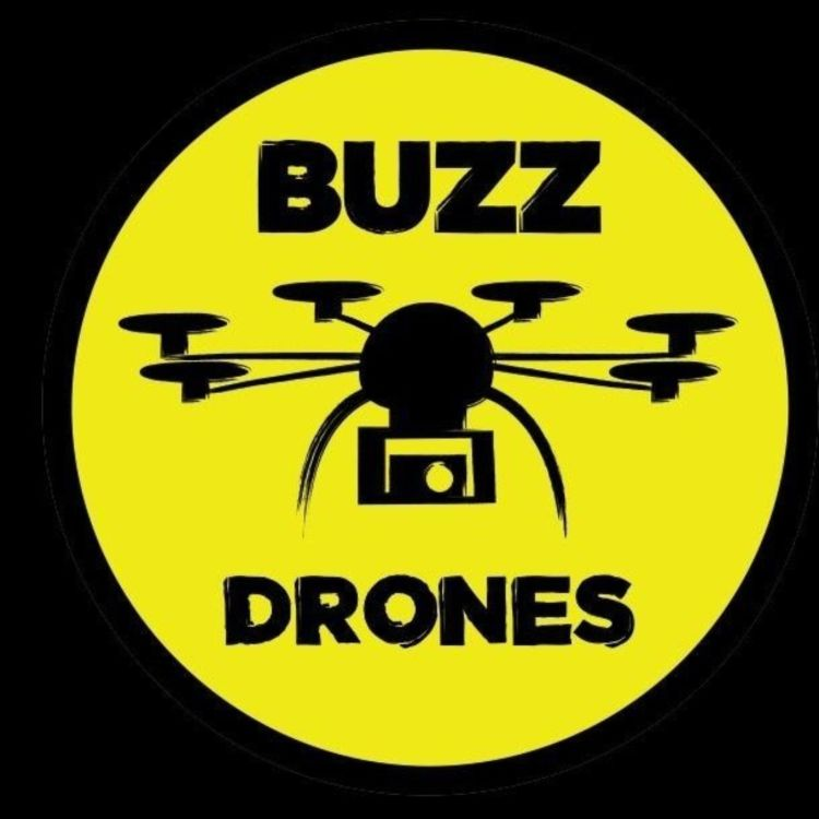 cover art for Buzz Drones