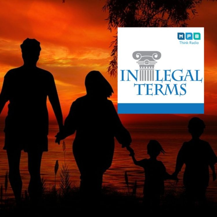 cover art for In Legal Terms: Adoption