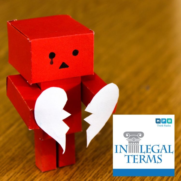 cover art for In Legal Terms: Divorce in Mississippi