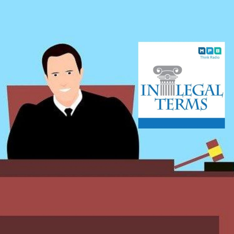 cover art for In Legal Terms: Chancery Court