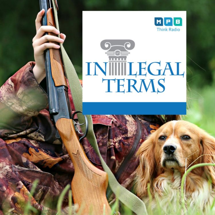 cover art for In Legal Terms: Gun Rights