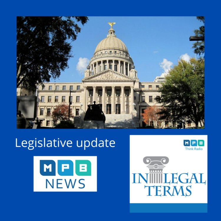 cover art for In Legal Terms: 2021 Legislature