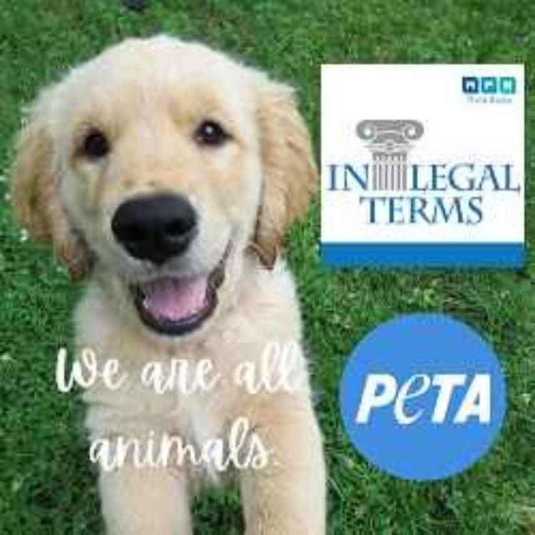 cover art for In Legal Terms: PETA