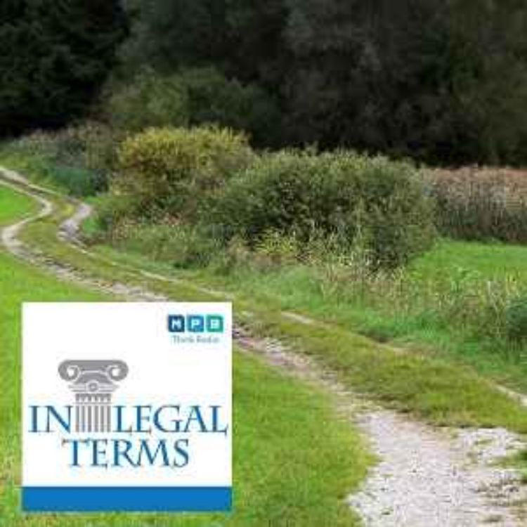 cover art for In Legal Terms: Easements and Roads