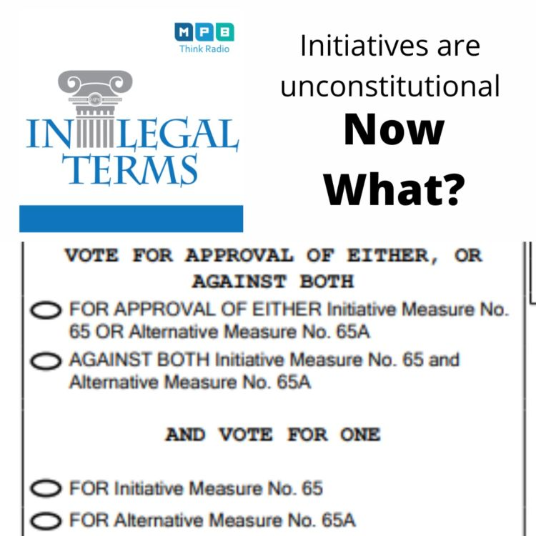 cover art for In Legal Terms: Initiatives Uncontitutional