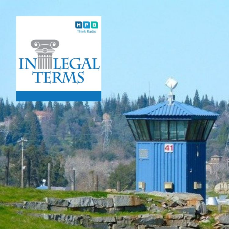 cover art for In Legal Terms: Public Defender System Reforms