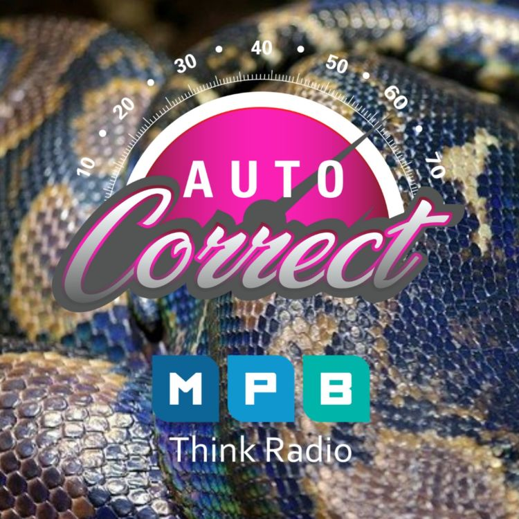cover art for Auto Correct: Snake Under The Hood