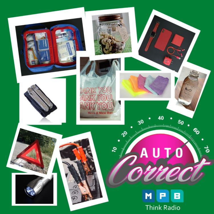 cover art for Auto Correct: Just In Case