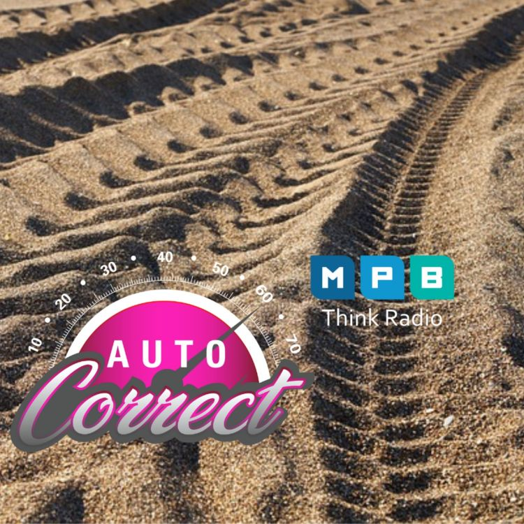 cover art for Auto Correct: Open Topic August