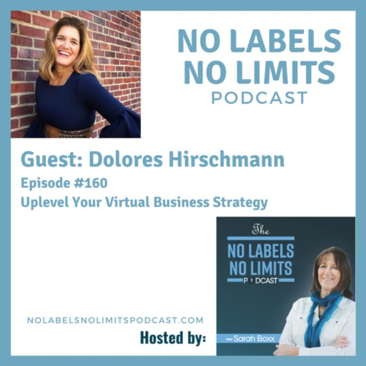 cover art for 160 - Uplevel Your Virtual Business Strategy with Dolores Hirschmann