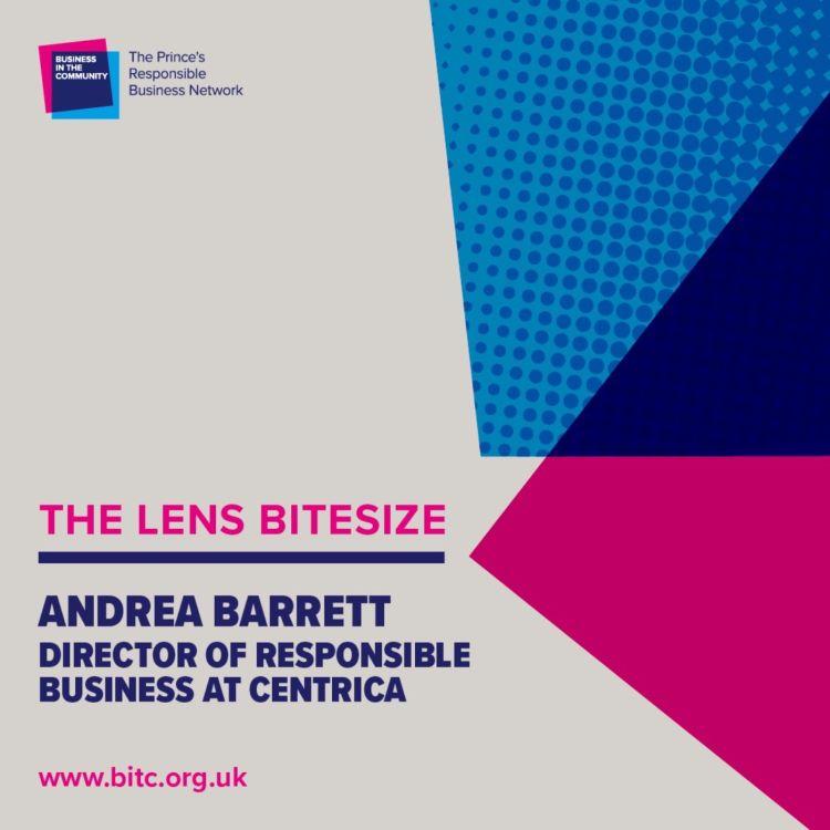 cover art for Bitesize: Andrea Barrett of Centrica, British Gas and Hive
