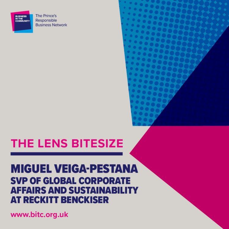 cover art for Bitesize: Miguel Veiga Pestana SVP Corporate Affairs & Sustainability at Reckitt Benckiser
