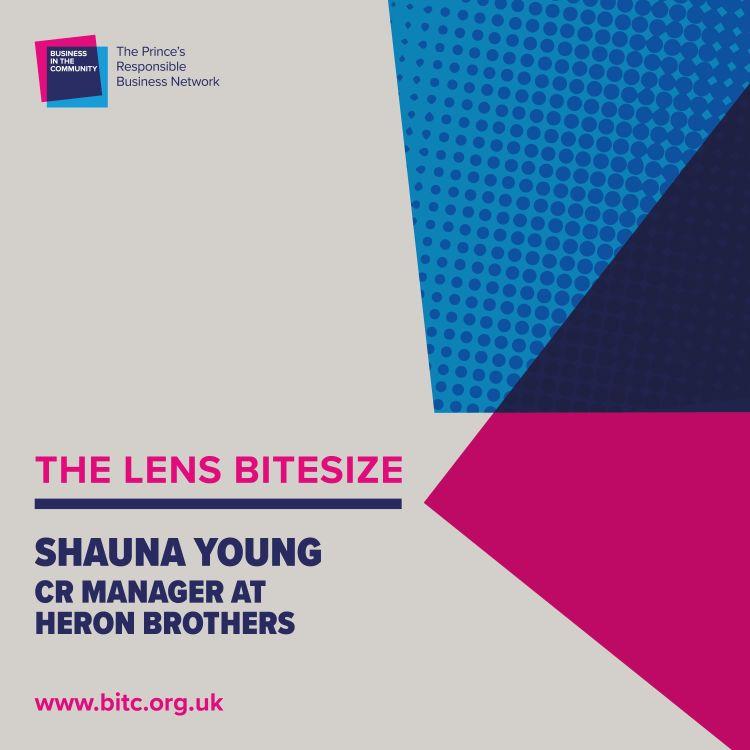 cover art for Bitesize: Shauna Young, CR Manager, Heron Brothers