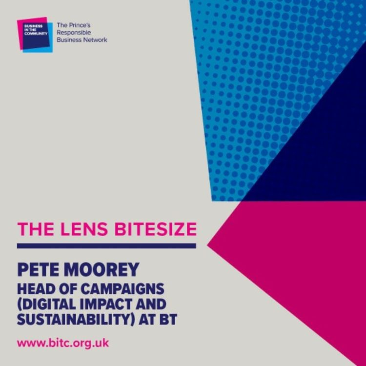 cover art for Bitesize: Pete Moorey, Head of Campaigns (Digital Impact and Sustainability), BT