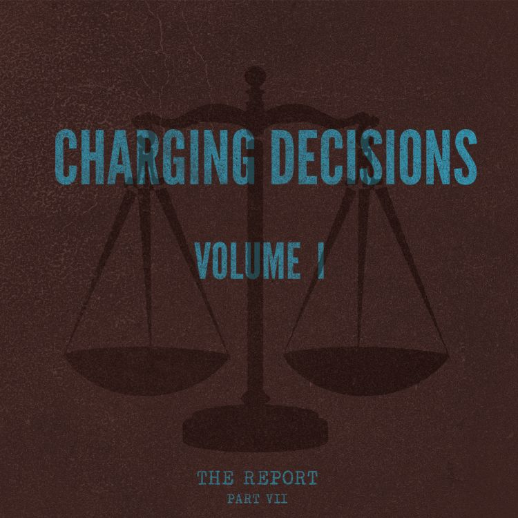 cover art for Part VII: Charging Decisions