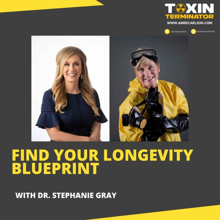 cover art for Find Your Longevity Blueprint with Dr. Stephanie Gray