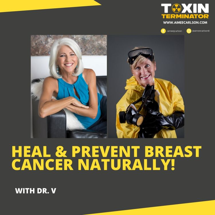 cover art for Heal & Prevent Breast Cancer Naturally with Dr. V