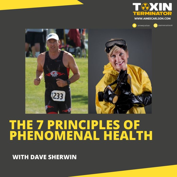 cover art for The 7 Principles of Phenomenal Health with Dave Sherwin