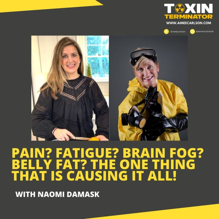 cover art for Pain? Fatigue? Brain Fog? Belly Fat? The ONE Thing That Is Causing It All! with Naomi Damask