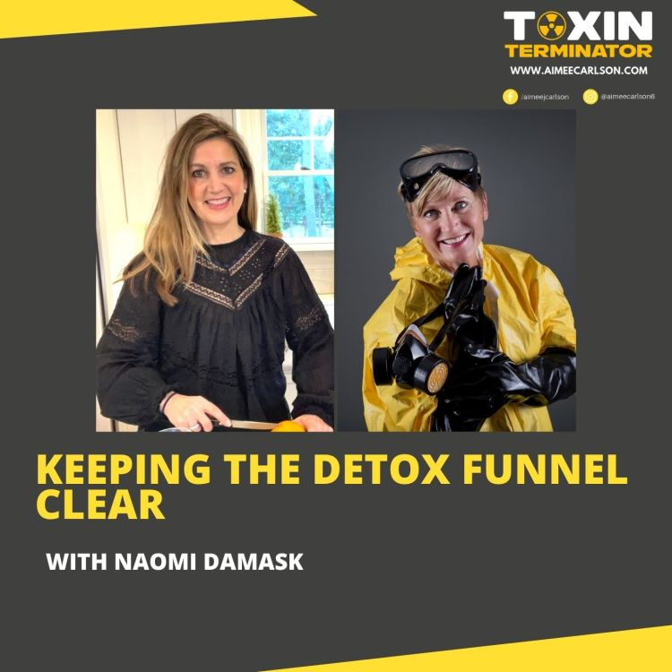 cover art for Keeping the Detox Funnel Clear with Naomi Damask