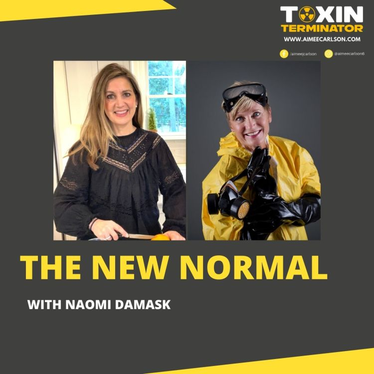 cover art for The New Normal with Aimee Carlson & Naomi Damask